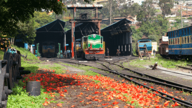 Photo of Toy Trains of India